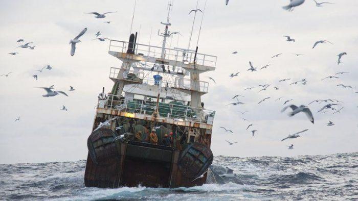 Pêche en haut mer