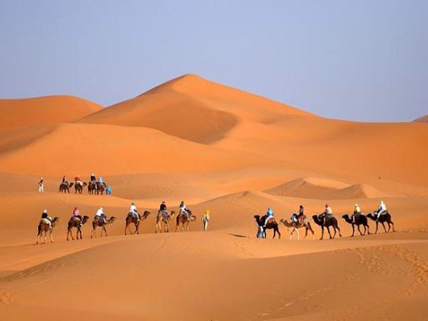 صحراء زاكورة