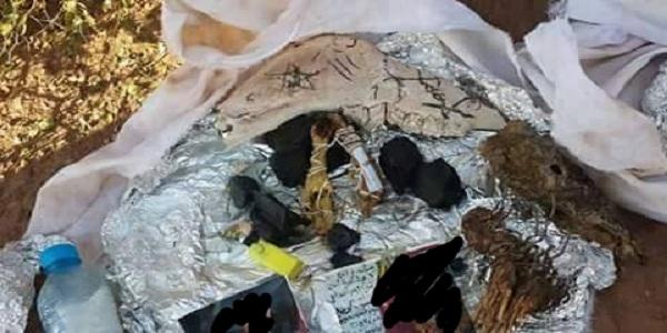 أول غنائم عاشوراء… شباب يعثرون على سحر داخل  سلحفاة بالقنيطرة (فيديو)